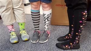 staff in crazy socks